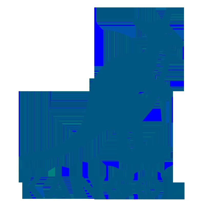 Kangol logotyp